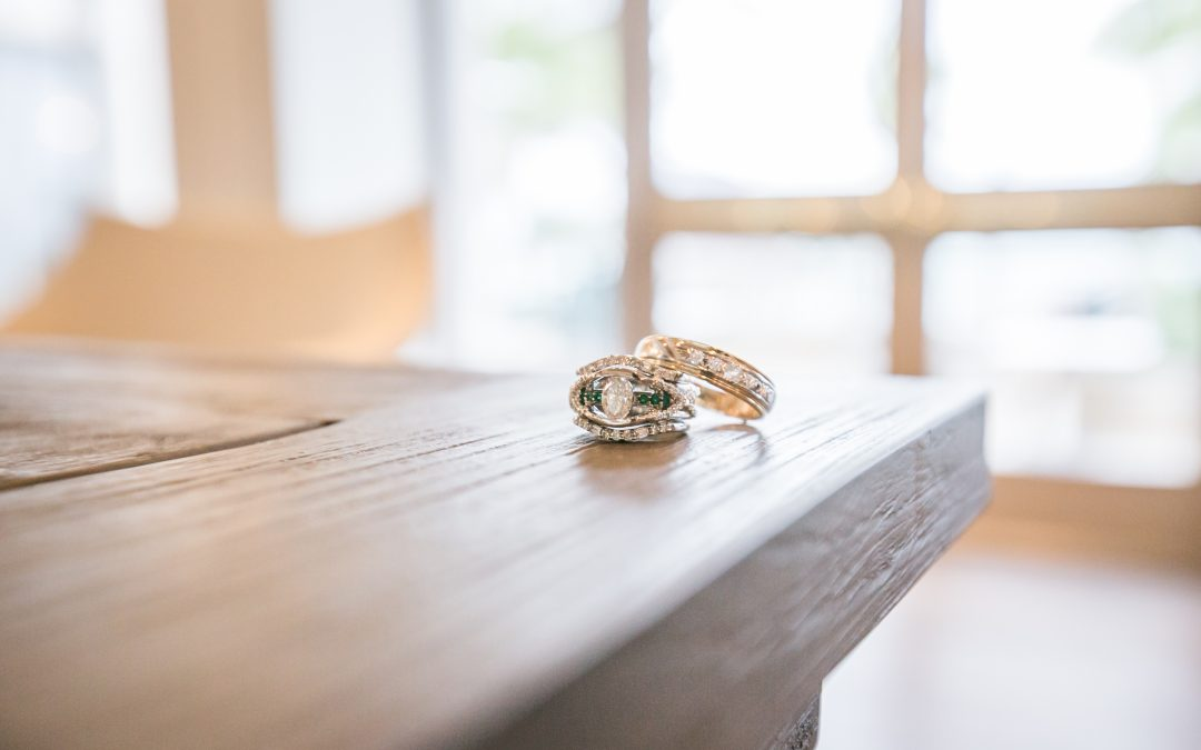 Engagement – Adam and Hilary Blau